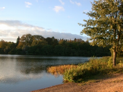 Lake Virginia Water