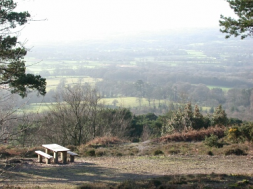 Views from Leith Hill Coldharbour